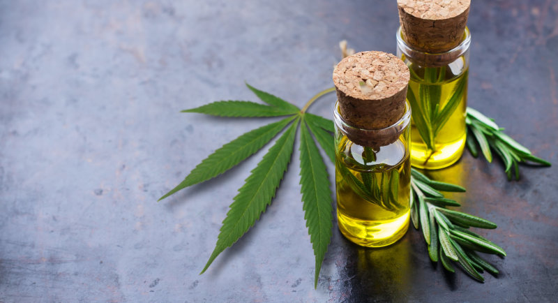 Tips for Choosing the Right Medical CBD Dispensary